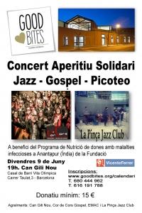 Cartell Concert Solidari Can Gili Nou (9Juny)-JPG